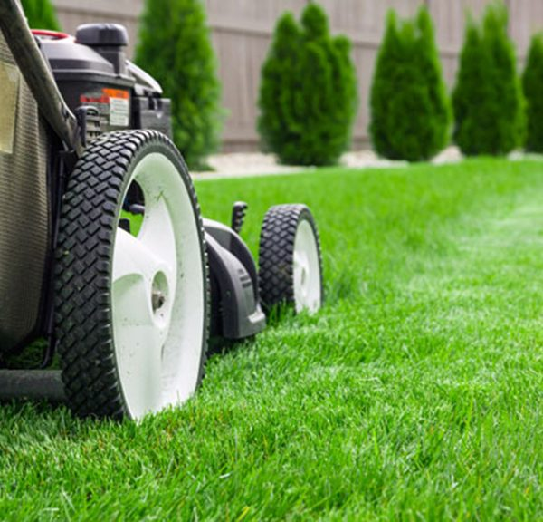 lawn-mowing-guide-1